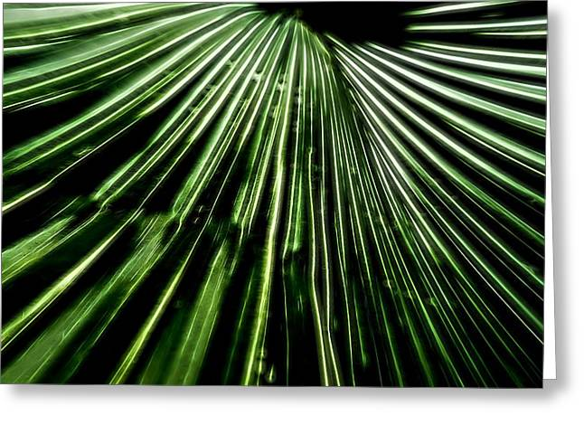 Wire Mixed Media Greeting Cards - Green Fibers Greeting Card by Dan Sproul