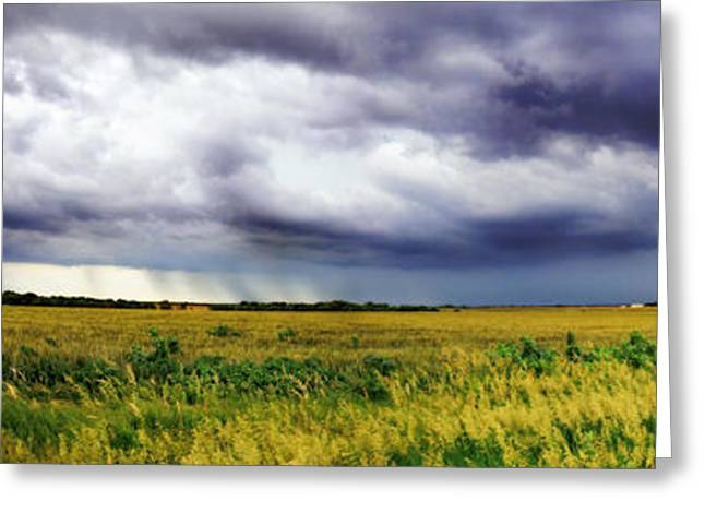 Gravel Road Greeting Cards - Green Fields Greeting Card by Eric Benjamin