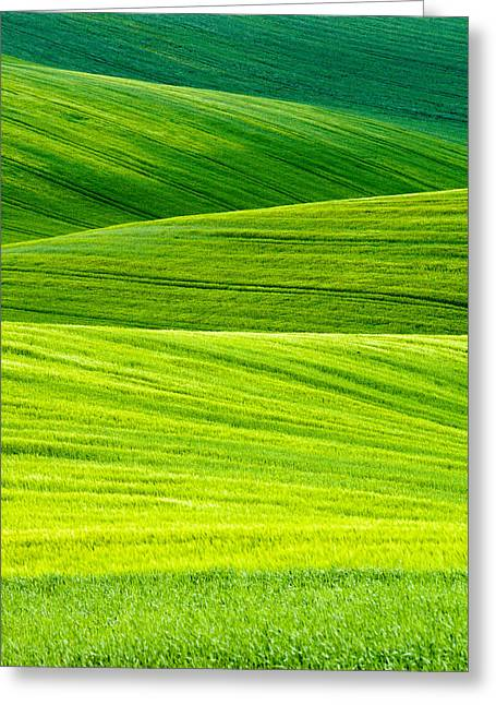 Moravia Greeting Cards - Green Fields Greeting Card by Marta Grabska-Press