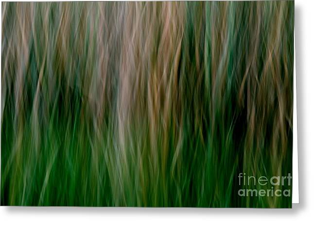 Must Have Greeting Cards - Green Flames Greeting Card by Kaveh Moghaddam