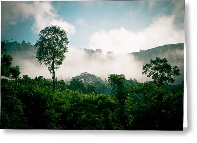 Landscape Framed Prints Greeting Cards - Green forest with blue sky with cloud and fog Greeting Card by Raimond Klavins