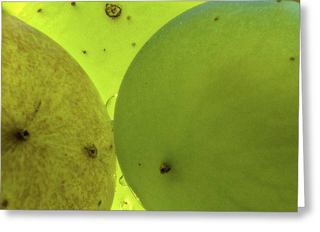 Defects Greeting Cards - Green Grape Close up Greeting Card by Jean Noren
