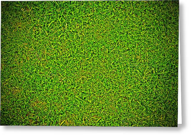 Herbage Greeting Cards - Green Grass Background Greeting Card by Chevy Fleet