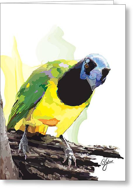 Jaybird Greeting Cards - Green Jay Greeting Card by Bonnie Griest