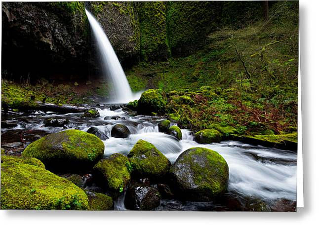 Creek Greeting Cards - Green Mile Greeting Card by Chad Dutson