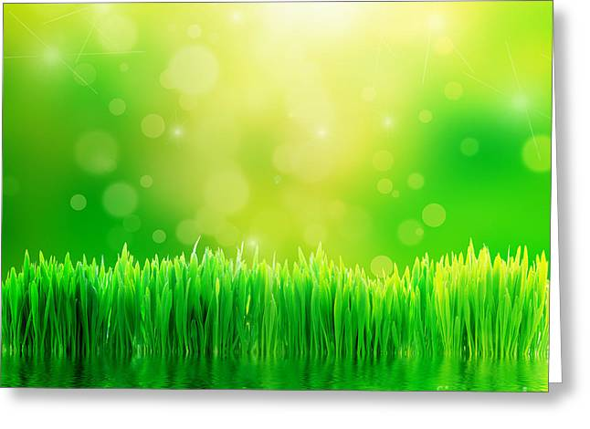 Green Nature Background With Fresh Grass Greeting Card by Michal Bednarek