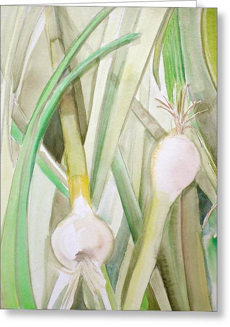 Green Onions Greeting Card by Debi Starr