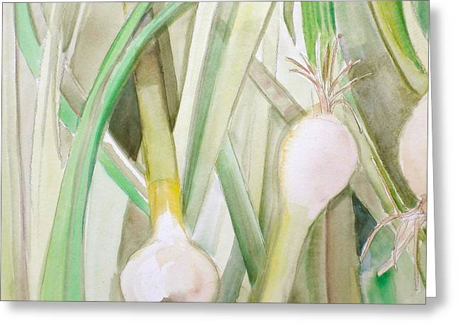 Green Onions Greeting Card by Debi Starr