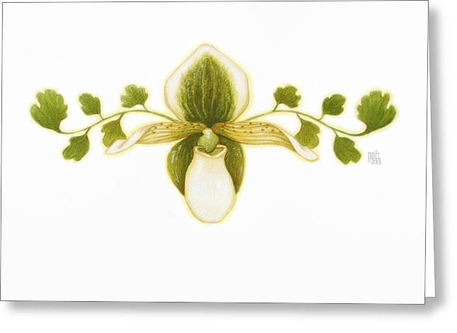 Lush Green Greeting Cards - Green Orchid Greeting Card by Catherine Noel