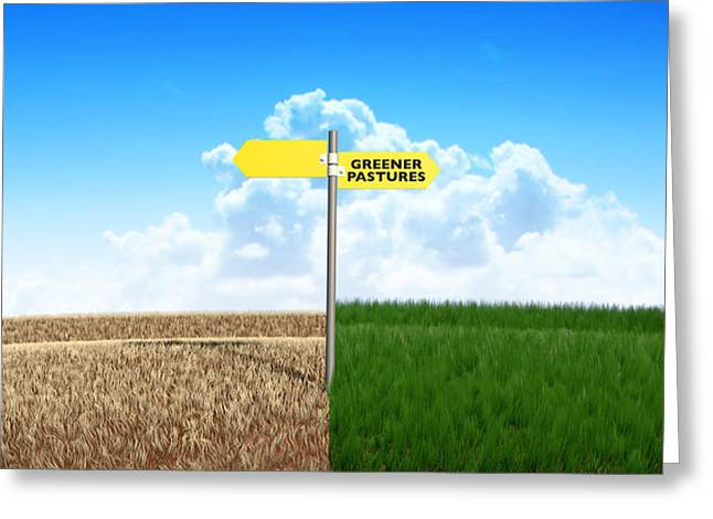 Opposite Greeting Cards - Green Pastures Sign Greeting Card by Allan Swart