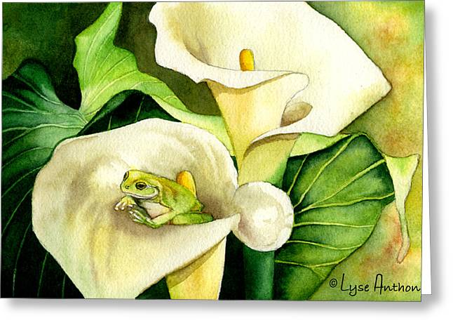 Calla Lily Greeting Cards - Green Peace Greeting Card by Lyse Anthony