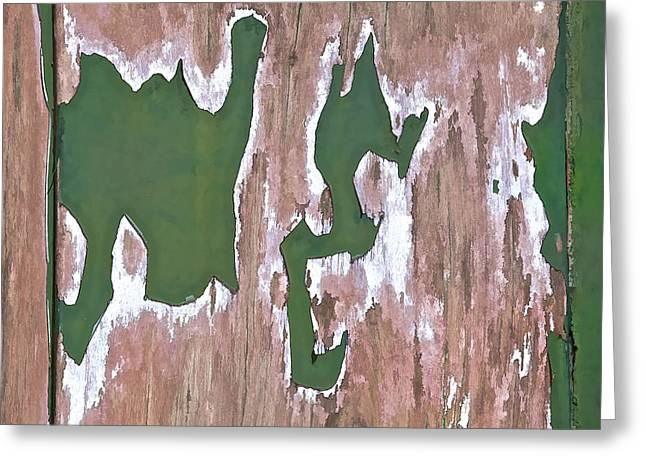 Paint Photograph Greeting Cards - Green Peeling Paint Greeting Card by David Letts