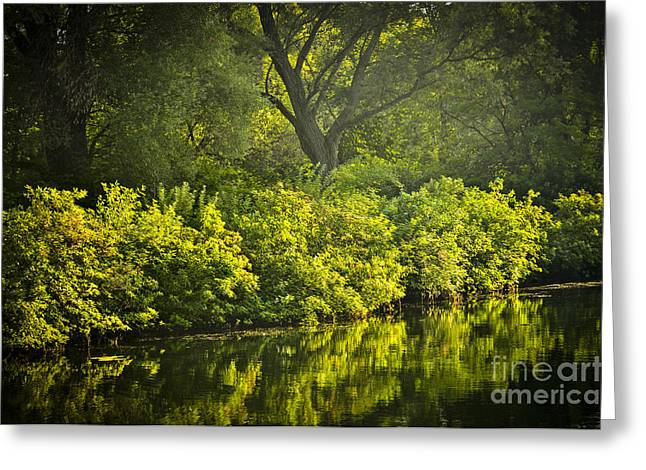 Backlit Greeting Cards - Green reflections in water Greeting Card by Elena Elisseeva