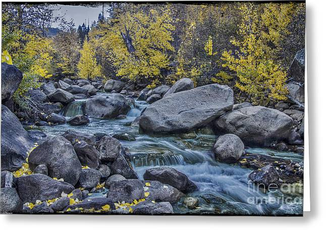 Black Rock Yellow Leaves Water Greeting Cards - Green River Greeting Card by Mitch Shindelbower