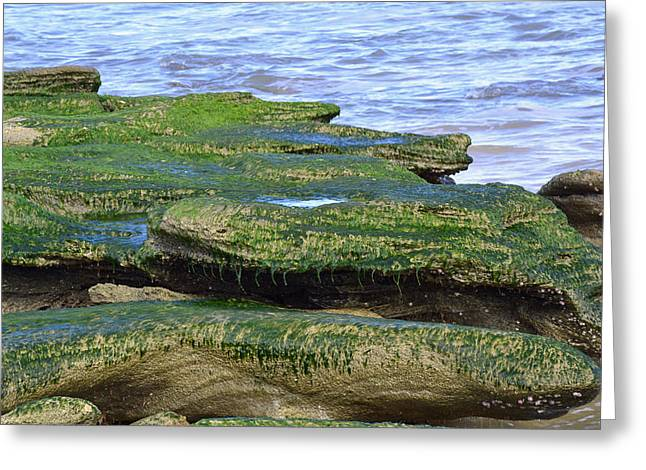 Bruce Photos Greeting Cards - Green Rock Mossy Monsters Greeting Card by Bruce Gourley