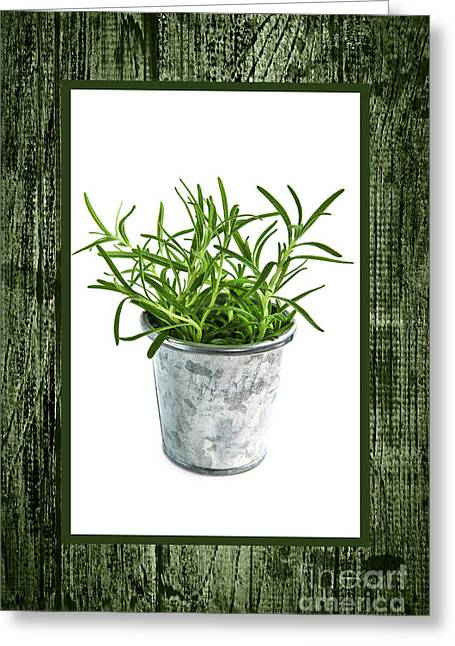 Sprig Greeting Cards - Green rosemary herb in small pot Greeting Card by Elena Elisseeva