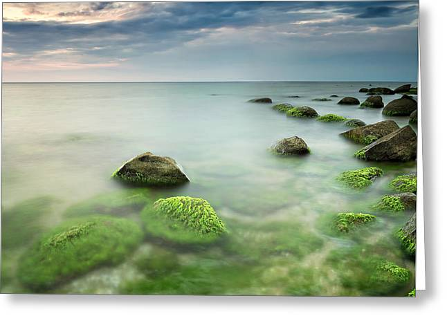 Algae Greeting Cards - Green sea at sunrise Greeting Card by Evgeni Ivanov