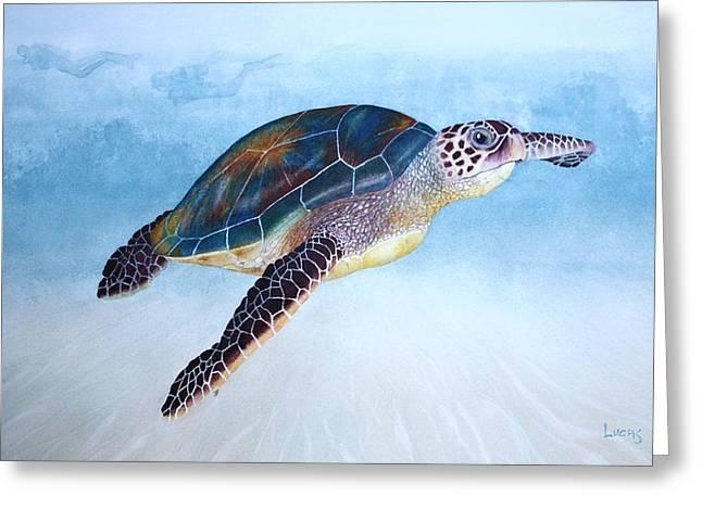 Algae Paintings Greeting Cards - Green Sea Turtle II Greeting Card by Jeff Lucas