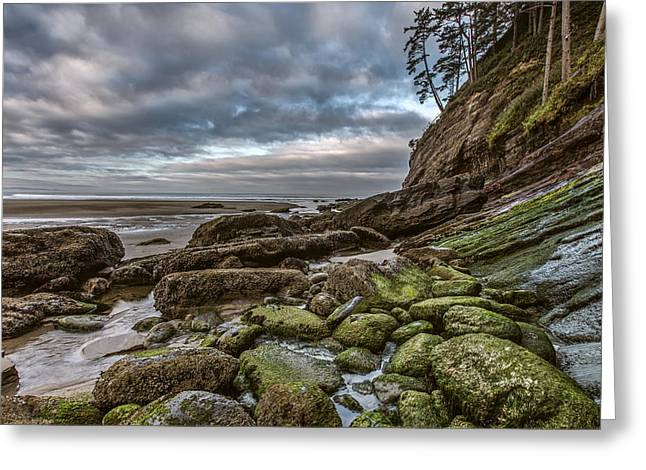 Bathroom Prints Greeting Cards - Green Stone Shore Greeting Card by Jon Glaser