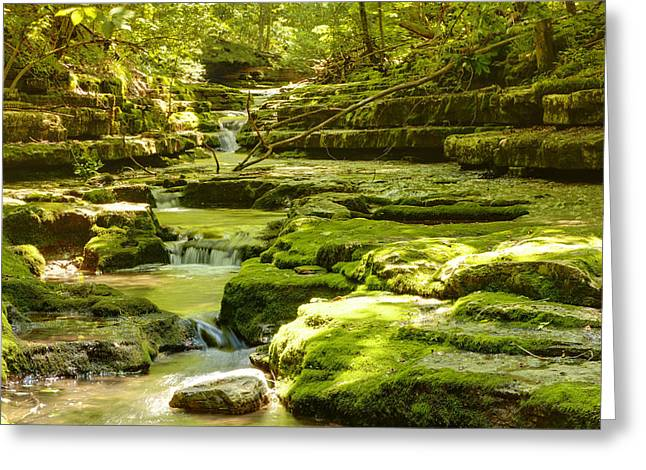 Beautiful Creek Greeting Cards - Green stream Greeting Card by Alexey Stiop