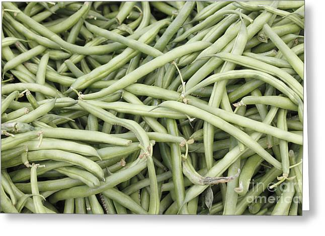 Green Beans Greeting Cards - Green String Beans Display Greeting Card by Lee Serenethos