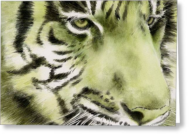 Green Tiger Greeting Card by Summer Celeste