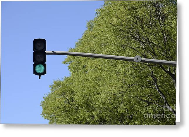 Green Traffic Light By Trees Greeting Card by Sami Sarkis