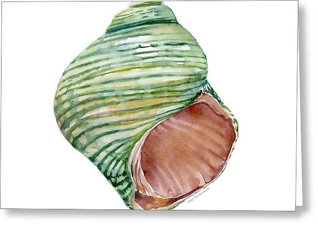 Background Paintings Greeting Cards - Green Turbo Shell Greeting Card by Amy Kirkpatrick