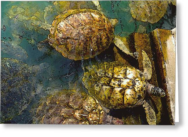 Green Turtle Greeting Cards - Green Turtles Greeting Card by Carey Chen