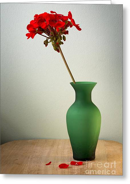 Tabletop Digital Art Greeting Cards - Green Vase Greeting Card by Donald Davis