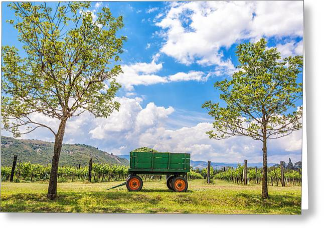 Vine Leaves Greeting Cards - Green Wagon and Vineyard Greeting Card by Jess Kraft