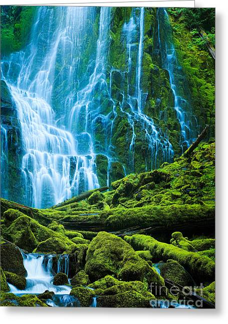 Willamette Greeting Cards - Green Waterfall Greeting Card by Inge Johnsson