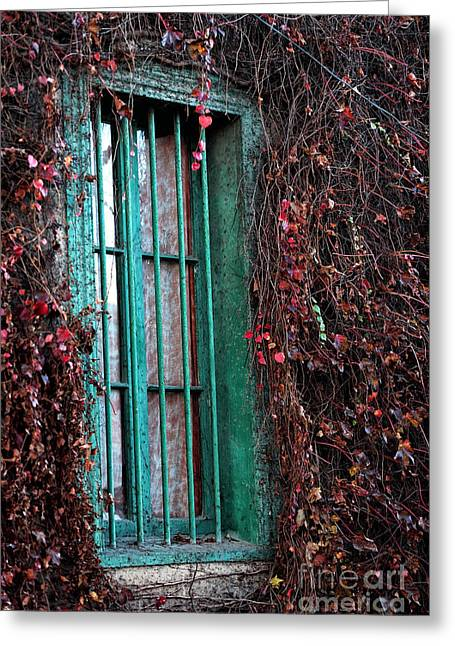 Green Chile Greeting Cards - Green Window in Valparaiso Greeting Card by John Rizzuto