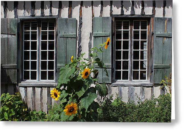 """oldest Wood Building"" Greeting Cards - Green Windows and Sunflowers 1 Greeting Card by Mary Bedy"