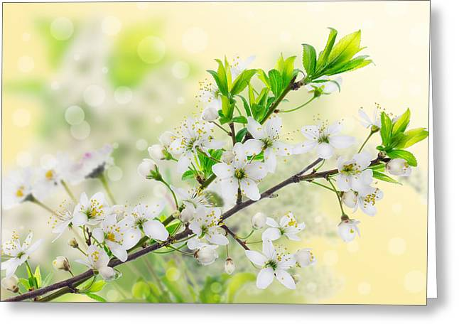 Green Day Greeting Cards - Green yellow spring concept Greeting Card by Aleksandr Volkov