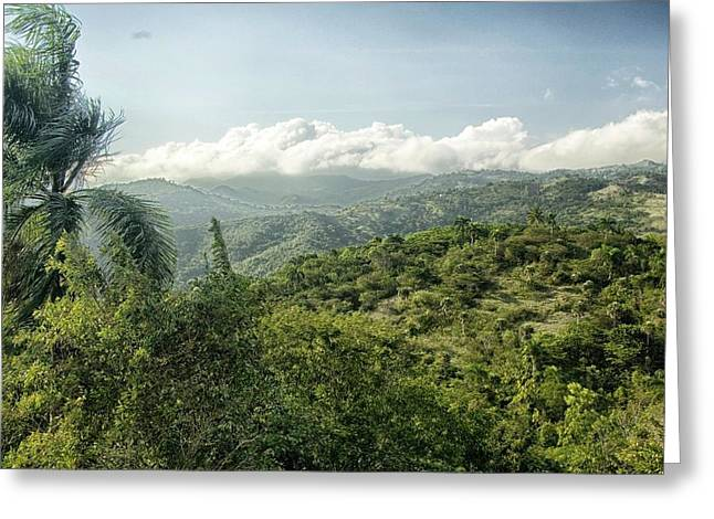 Mountain Valley Greeting Cards - Greenery of Nature Greeting Card by Mountain Dreams