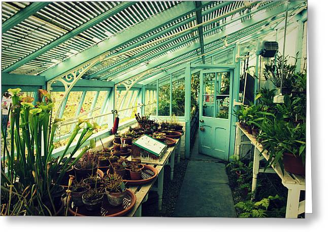Grate Greeting Cards - Greenhouse of Charles Darwin Greeting Card by Chevy Fleet