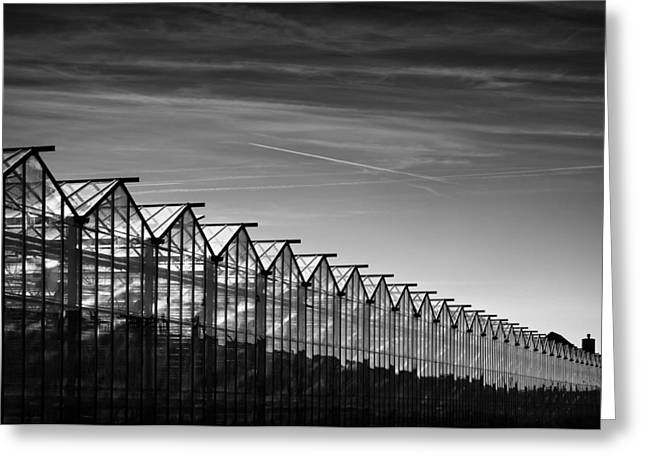 Greenhouses And Vapour Trails Greeting Card by Dave Bowman