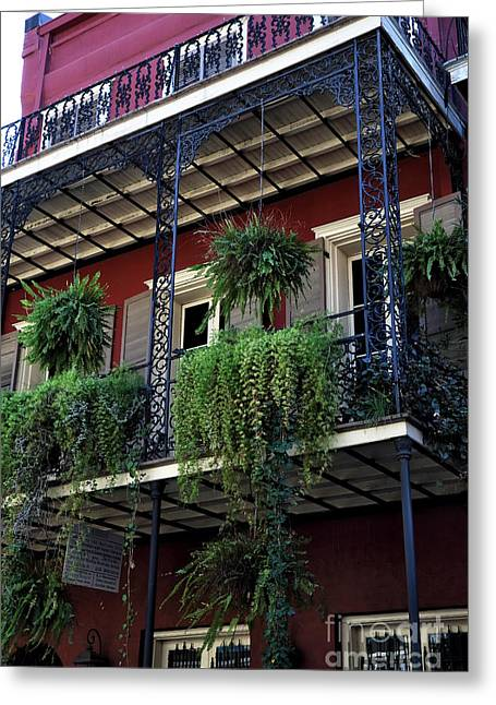 Greens In New Orleans Greeting Card by John Rizzuto