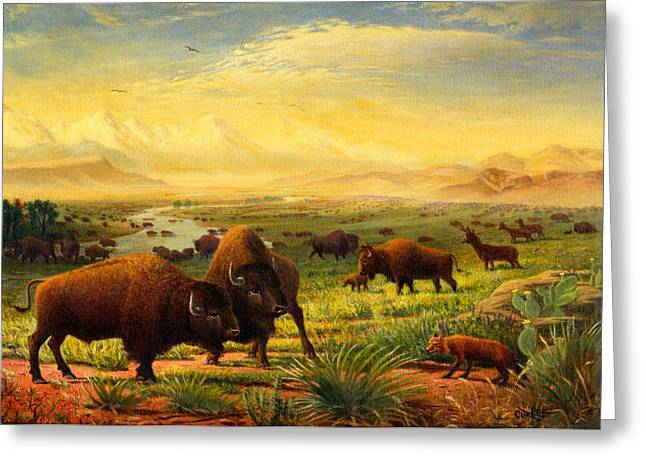 The American Buffalo Paintings Greeting Cards - Greeting Card Buffalo On The Plains Greeting Card by Walt Curlee