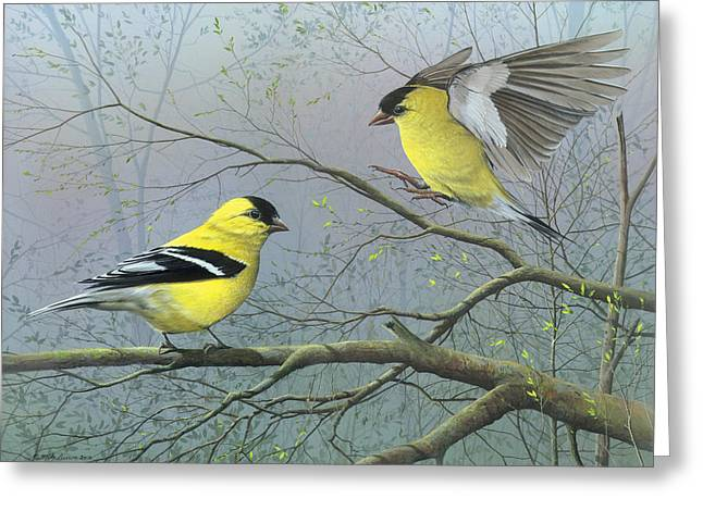 Songbird Prints Greeting Cards - Greetings My Friend Greeting Card by Mike Brown