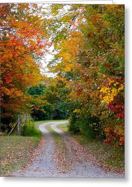 Jennifer Lamanca Kaufman Greeting Cards - Gretna Fall Leaves Greeting Card by Jennifer Lamanca Kaufman