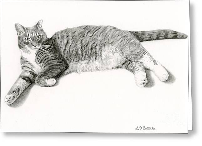 Photo-realism Greeting Cards - Grey Cat- Frieda Greeting Card by Sarah Batalka
