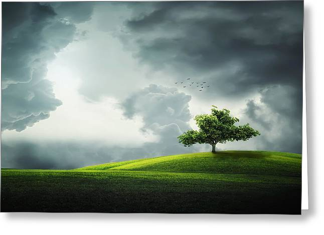 Spring Scenes Greeting Cards - Grey clouds over field with tree Greeting Card by Bess Hamiti