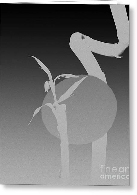 Reception Digital Art Greeting Cards - Grey Moon Greeting Card by Cheryl Young
