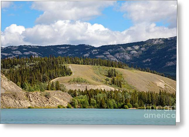 Whitehorse Greeting Cards - Grey Mountain Greeting Card by Charline Xia