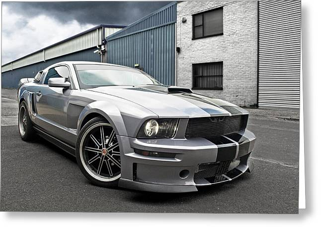 Tungsten Greeting Cards - Grey Power - Cervini Mustang Greeting Card by Gill Billington