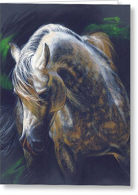 Spotted Horse Greeting Cards - Grey Spotted Horse Greeting Card by Zorina Baldescu
