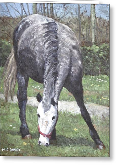 Horse In Field Greeting Cards - Grey Spotty Horse In Field Greeting Card by Martin Davey