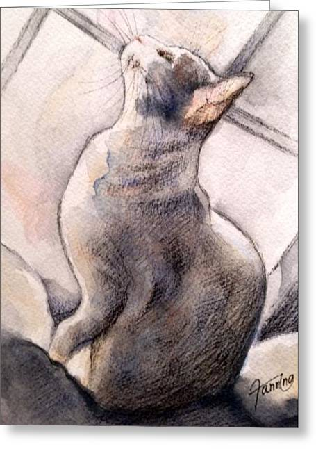 Springsteen Paintings Greeting Cards - Waiting on a Sunny Day Greeting Card by Mary Fanning
